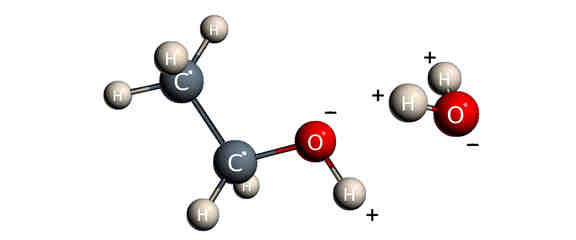What Type Of Solvents Are Water And Ethanol Socratic